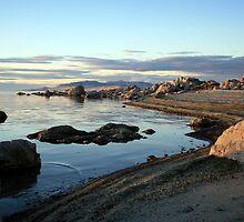 Island Shoreline by Gene Praag