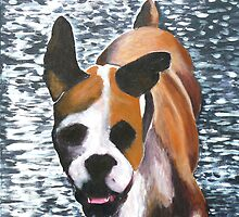 Bertie the Boxer by spuddy