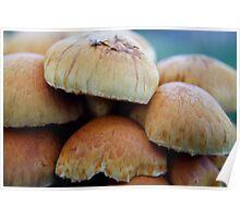 Mushroom Stack Poster