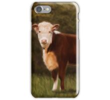 Hereford Heifer iPhone Case/Skin