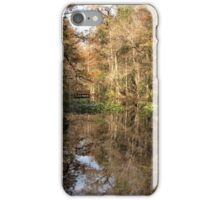 Beauty in the Swamp iPhone Case/Skin