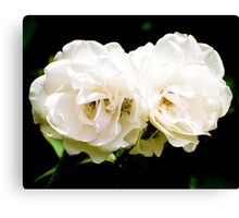 Roses For Refuge Canvas Print