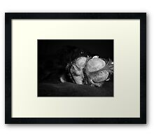 Talk to the PAW! Framed Print
