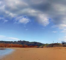 Torquay Surf Life Saving Club, back beach. Australia by Andy Berry