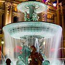 Paris Fountain by Tim Ray