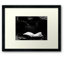 contrast 01 Framed Print