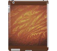 Ice Fire iPad Case/Skin