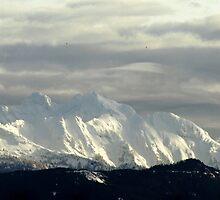Cascade Mountains by Kat Miller