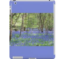 Beautiful bluebells number 3 iPad Case/Skin