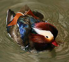 The Mandarin by GregV