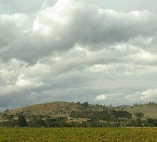Yarra Glen Autumn by retsilla
