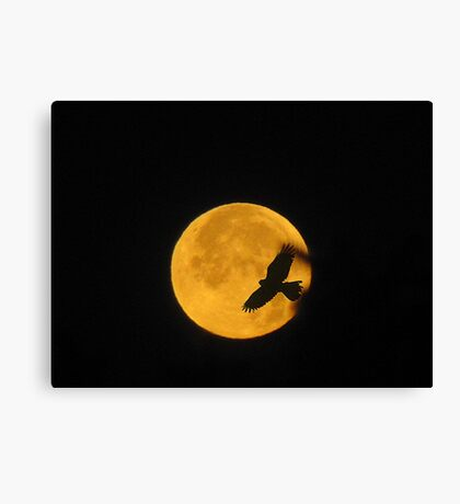 Flying To The Moon Canvas Print