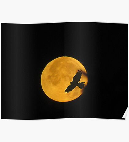 Flying To The Moon Poster
