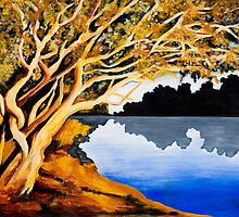 Burnt Umber on Coongie Lakes by spuddy