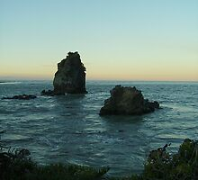 Shag Rock at Sunset 1 by skyhorse
