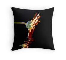 Elixir of Life Throw Pillow