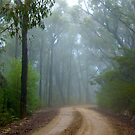 Tableland Mist by Jeremy Harrington