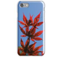 Red Japanese Maple Leaves iPhone Case/Skin