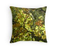 Australian Autumn Throw Pillow