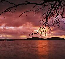 Sunset by Steve D