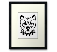 Pit bull head face Framed Print
