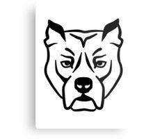 Pit bull Metal Print