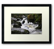WATER ON THE RUN Framed Print