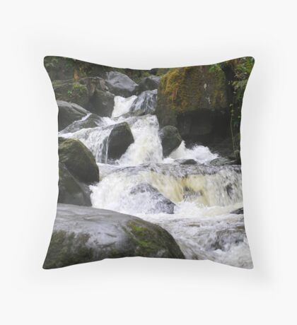 WATER ON THE RUN Throw Pillow