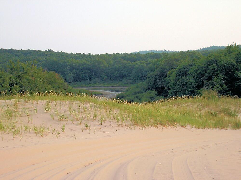 Nature at the Sand Dunes by tawaslake