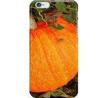 Pumpkin for Fall, Halloween iPhone Case/Skin