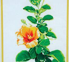 Tropical Hibiscus by Nancy Pobiak