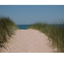 Pathway to Paradise Photographic Print