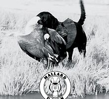 Dog hunting Geese - Mallard Down by mallarddown