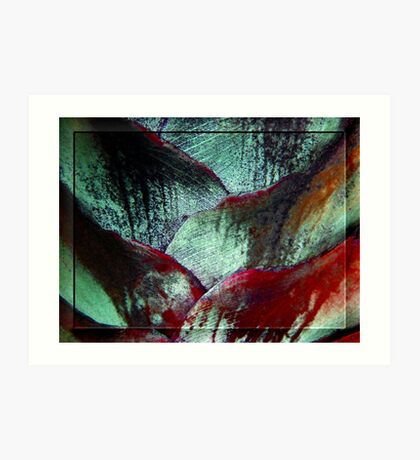 Palm Patterns... Art Print