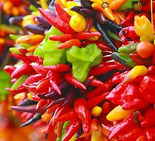 Colorful Hot Pepper Bunches by EmeraldRaindrop