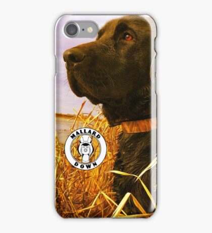Black Lab in Reeds - Mallard Down iPhone Case/Skin