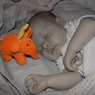 Orange Flump by zaphos