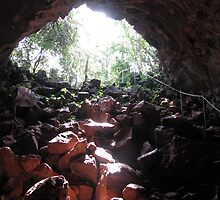 Undara Lava Tube by Sue Wickes
