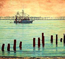 Coastal Shrimp Boat  by Jonicool