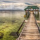 The Rickety Pier by Adrian Evans