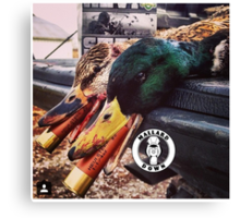 Heavy Shot Mallards - Mallard Down Canvas Print