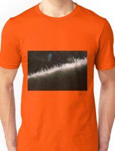 Poddle Dog Fur Backlit Unisex T-Shirt