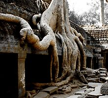 Temples of Angkor - Cambodia by Stephen Permezel