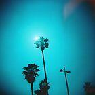 la palm.2  by rakastajatar