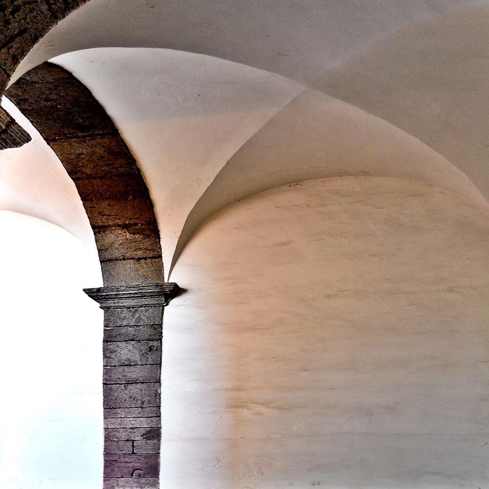 ARCHES AND VAULT RECTOR'S PALACE by Thomas Barker-Detwiler