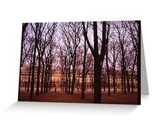 Winter walk Jardin de Tuiliers, Paris (Dry Brush watercolour effect) Greeting Card
