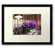 living flowers in the interior  Framed Print