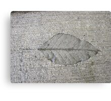 Sidewalk Art by Leaf Canvas Print