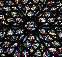 La Rose de la Sainte Chapelle by ardwork