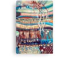 Palm Contractions Canvas Print
